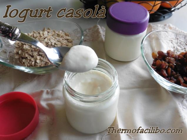 iogurt natural