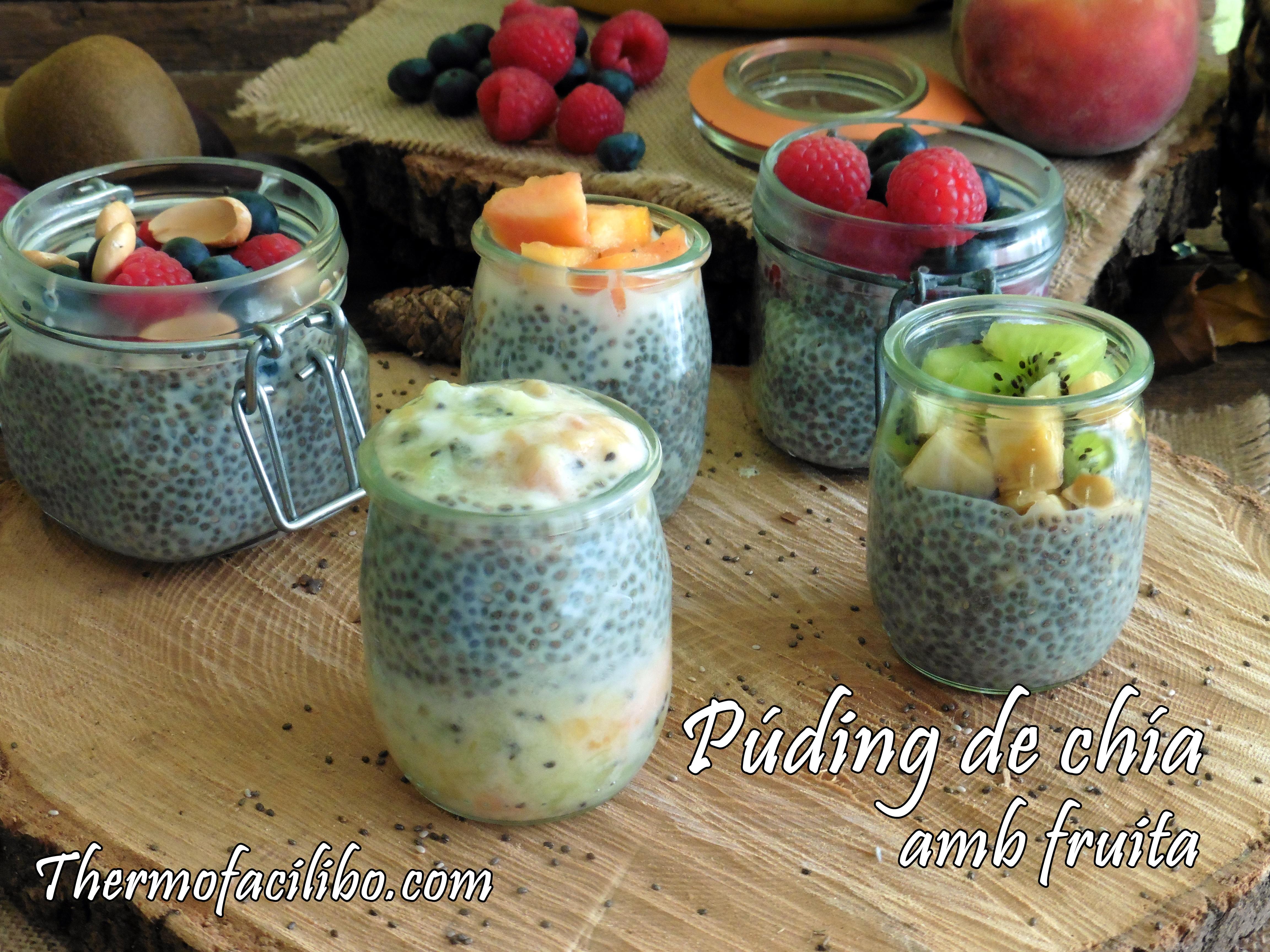 Púding de chía amb fruita.2