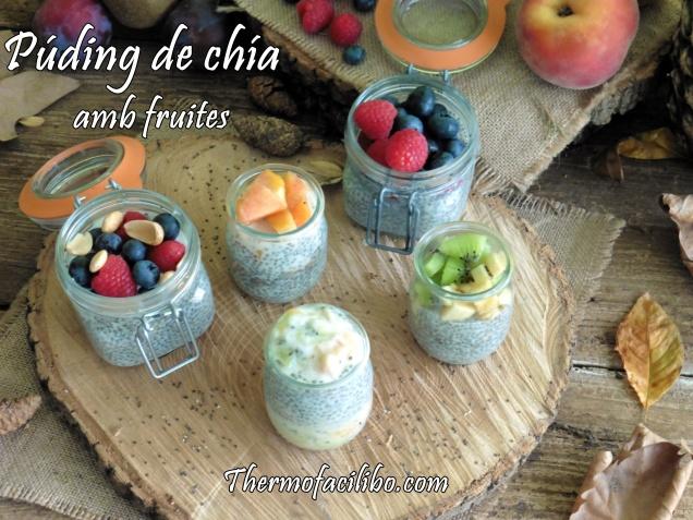 Púding de chía amb fruites..