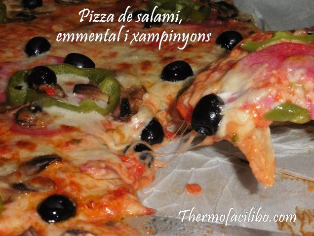 Pizza de salami,emmental i xampinyons.3