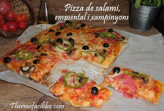 Pizza de salami,emmental i xampinyons.4