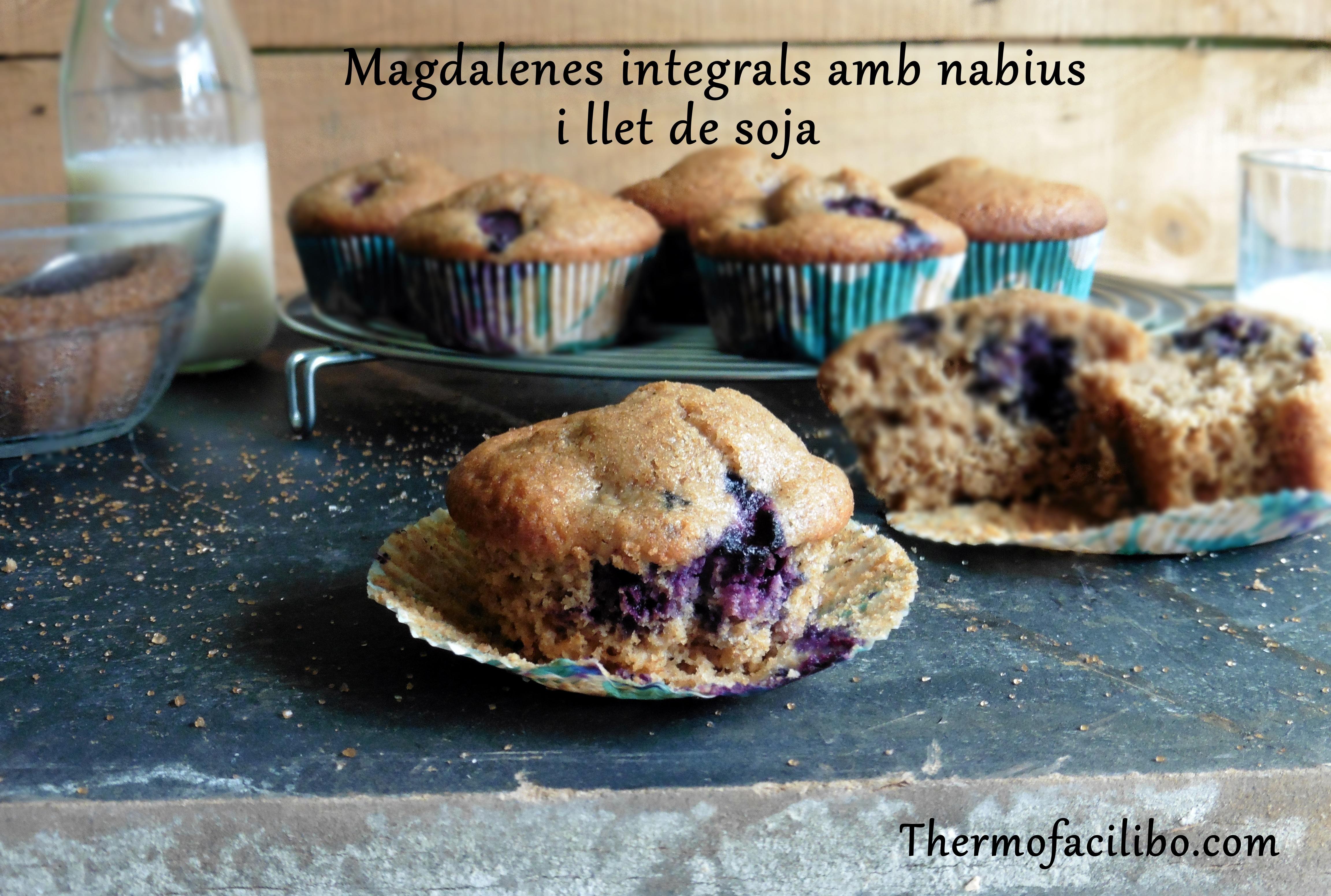 Magdalenes integrals amb nabius i soja
