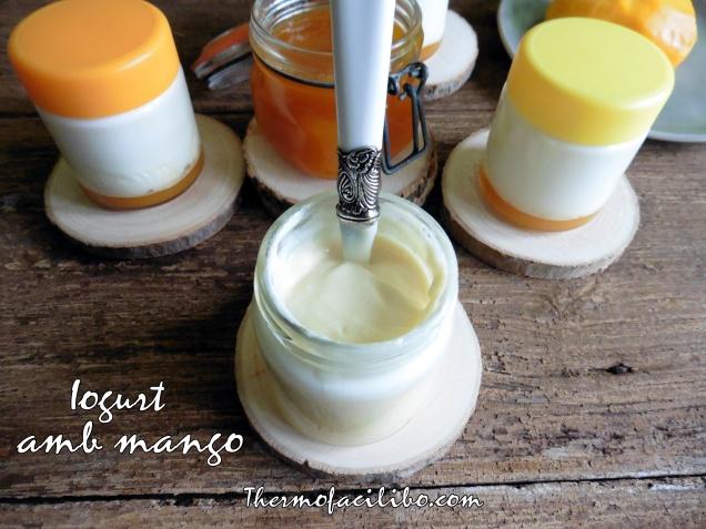 Iogurt amb mango (2)