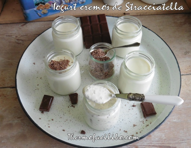 Iogurt cremós de Stracciatella.-1-