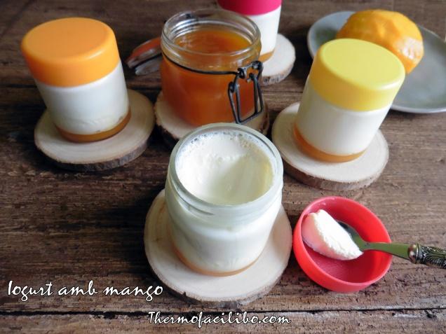 Iogurt de mango