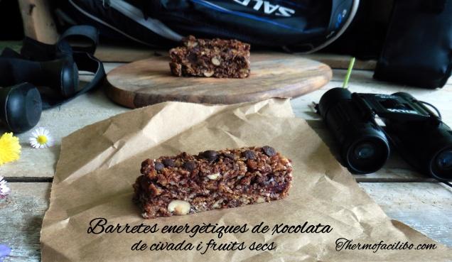 Barretes energètiques de xocolata, civada i fruits secs