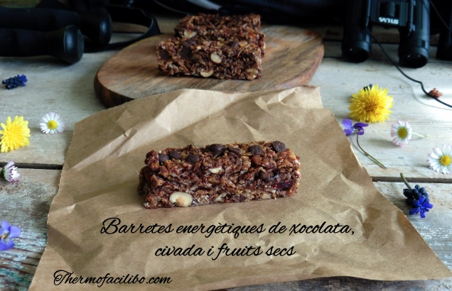 Barretes energètiques de xocolata,civada i fruits secs