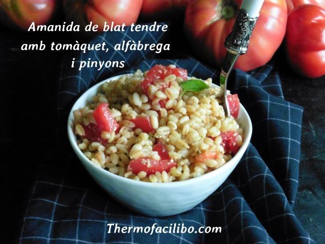 Amanida de blat tendre amb tomàquet, alfàbrega i pinyons