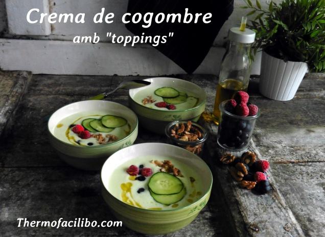 Crema de cogombe amb toppings