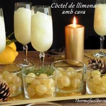 cc3b2ctel-de-llimona-amb-cava